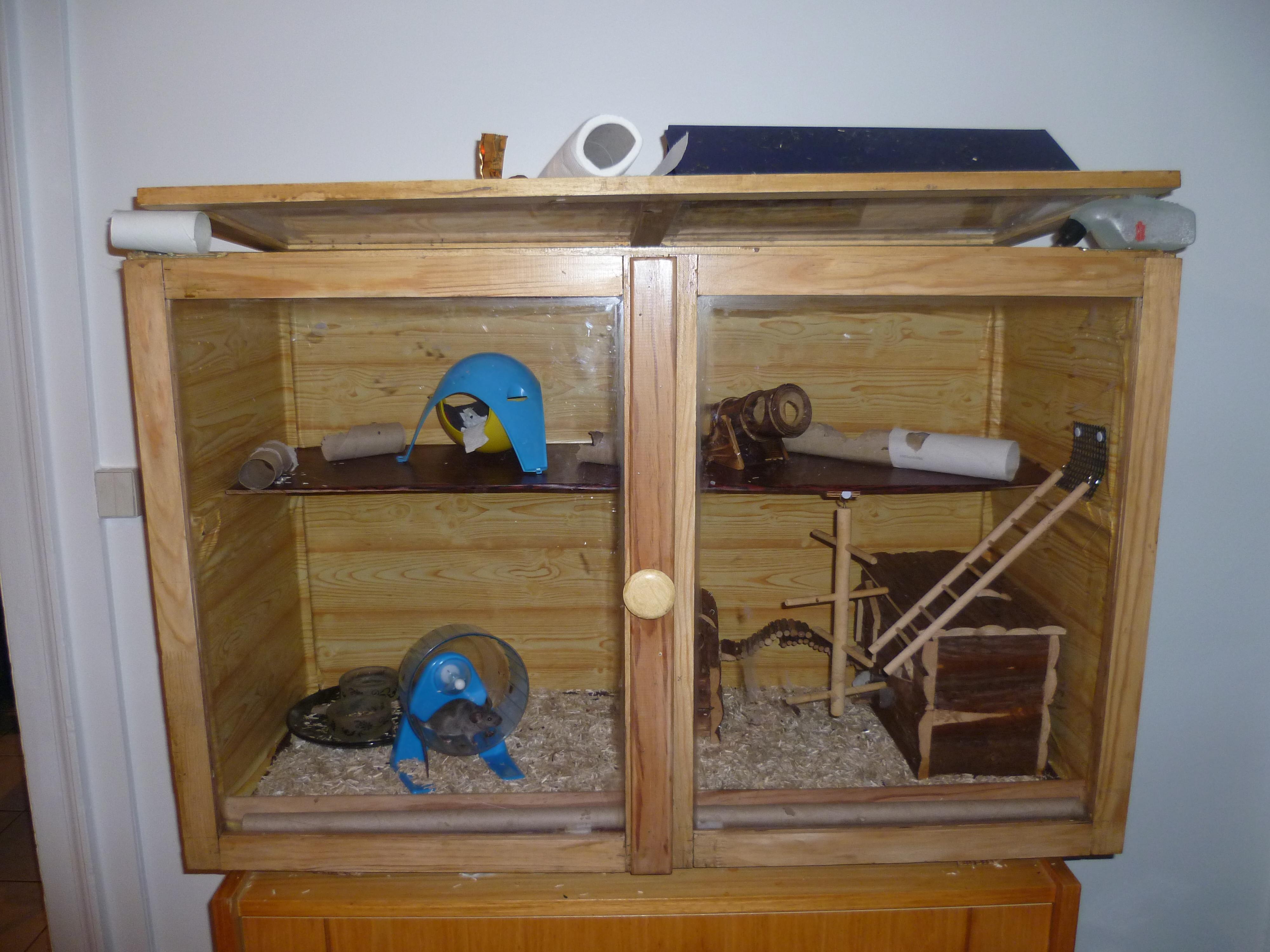 maison pour souris taupier sur la france. Black Bedroom Furniture Sets. Home Design Ideas