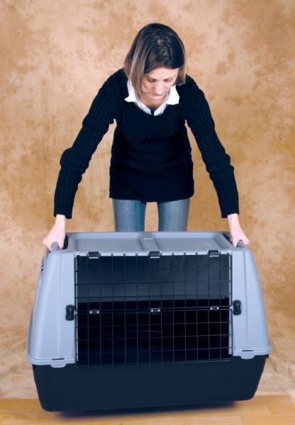 cage transport chien pas cher taupier sur la france. Black Bedroom Furniture Sets. Home Design Ideas
