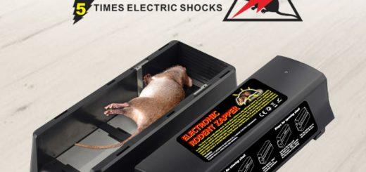 faire fuir les rats naturellement taupier sur la france. Black Bedroom Furniture Sets. Home Design Ideas