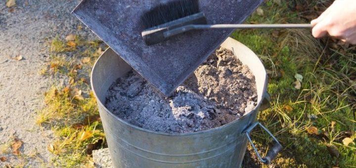 Comment se d barrasser des rats dans un poulailler taupier sur la france - Se debarrasser des taupes dans le jardin ...
